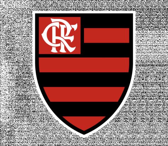 Flamengo busca profissionais com deficiência