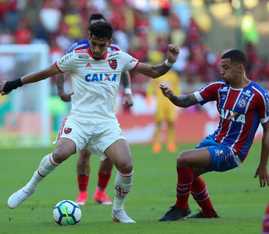 Flamengo encara o Bahia pelo Brasileirão