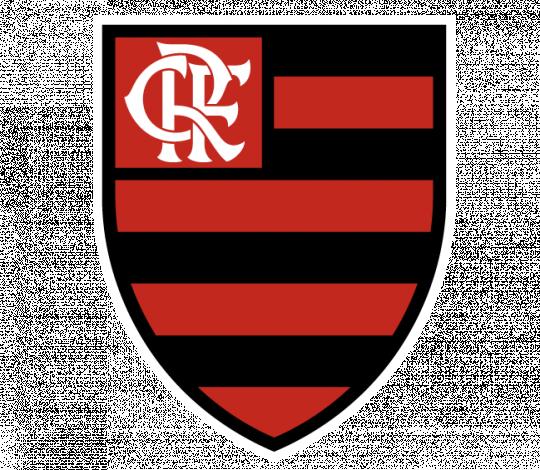 Flamengo poderá ser auditado por Big Four