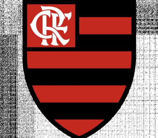 Flamengo exclui sócio-torcedor que agrediu tricolor no último Fla-Flu