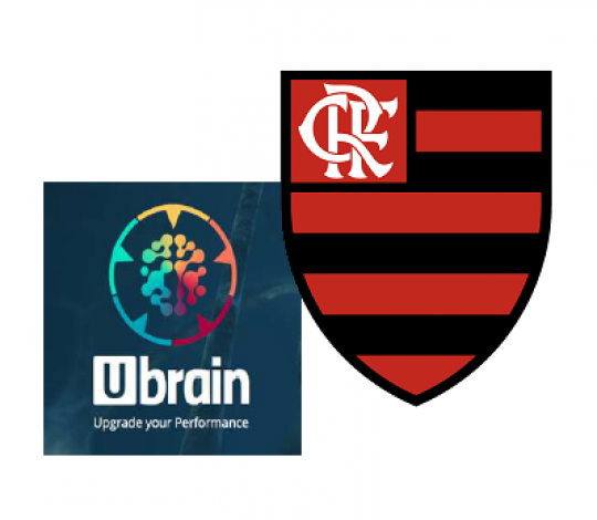Flamengo é pioneiro na implementação de protocolo de concussão cerebral