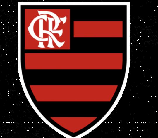 Leonardo Gaciba realiza palestra sobre o VAR com o elenco do Flamengo