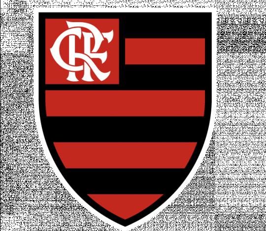Confira os relacionados para Cabofriense x Flamengo