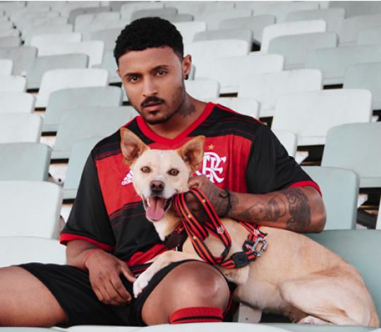 Flamengo lança linha pet em parceria com a Free Faro