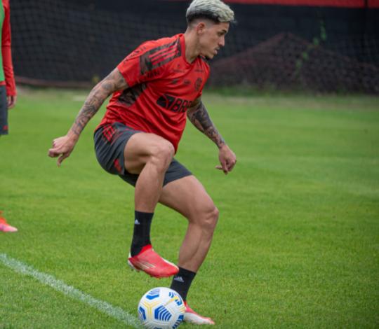Flamengo se reapresenta no Ninho do Urubu visando partida contra o ABC
