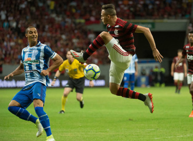 Flamengo X CSA -  Campeonato Brasileiro - 12-06-2019