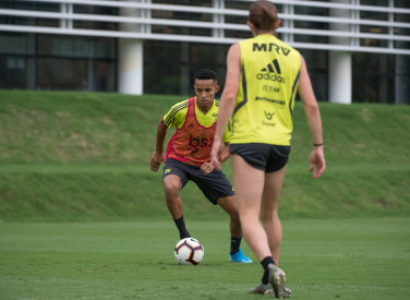 Treino CT Flamengo - 19-11-2019